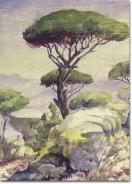 Rocks and Pine Trees, by Mustafa Farroukh