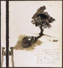 Dessin de Victor Hugo