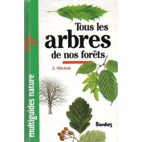 Comment estimer l ge d un arbre krapo arboricole - Reconnaitre les arbres par leur tronc ...
