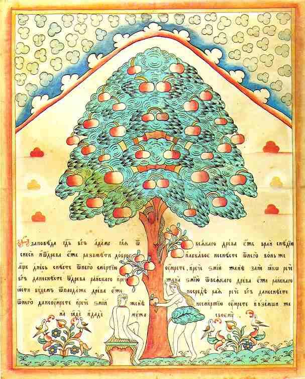Les arbres du Jardin d'Éden dans immagini sacre adam-eve