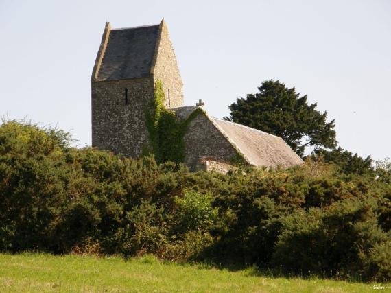 L'if de l'église St Martin 1