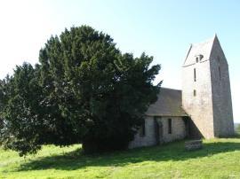 L'if de l'église St Martin 2