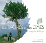 arbres remarquables mauges