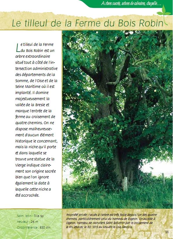 Arbres remarquables de la Somme Krapo arboricole # Glace A La Ferme Bois Himont