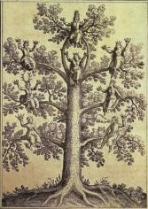 arbrephilosophique1.jpg