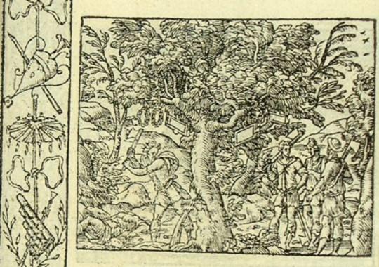 Érysichthon abat un arbre sacré de Cérès (Métamorphose Lyon 1557) - B. Salomon
