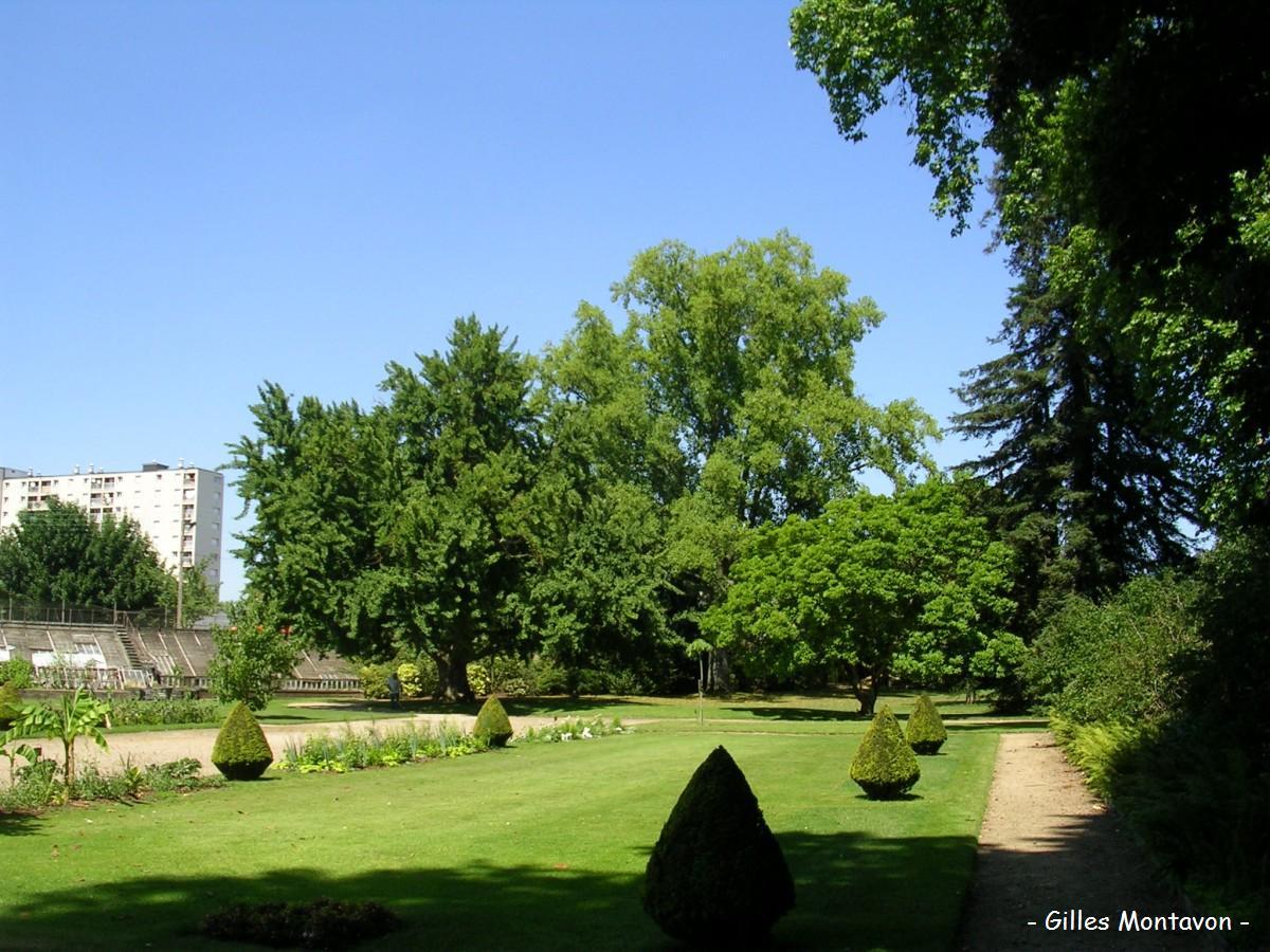 Le jardin botanique d orl ans loiret krapo arboricole - Arbres de jardin ...