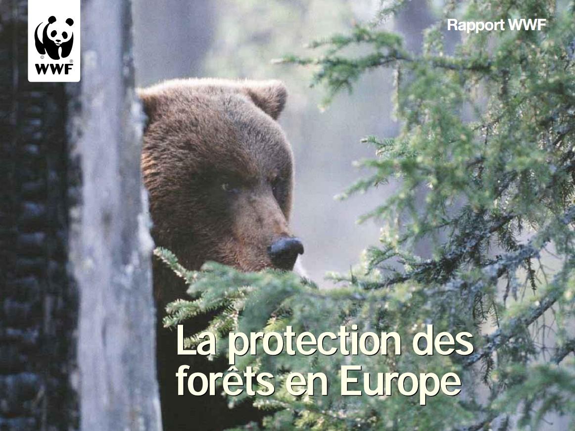 Super La protection des forêts en Europe – Rapport WWF | Krapo arboricole RB29