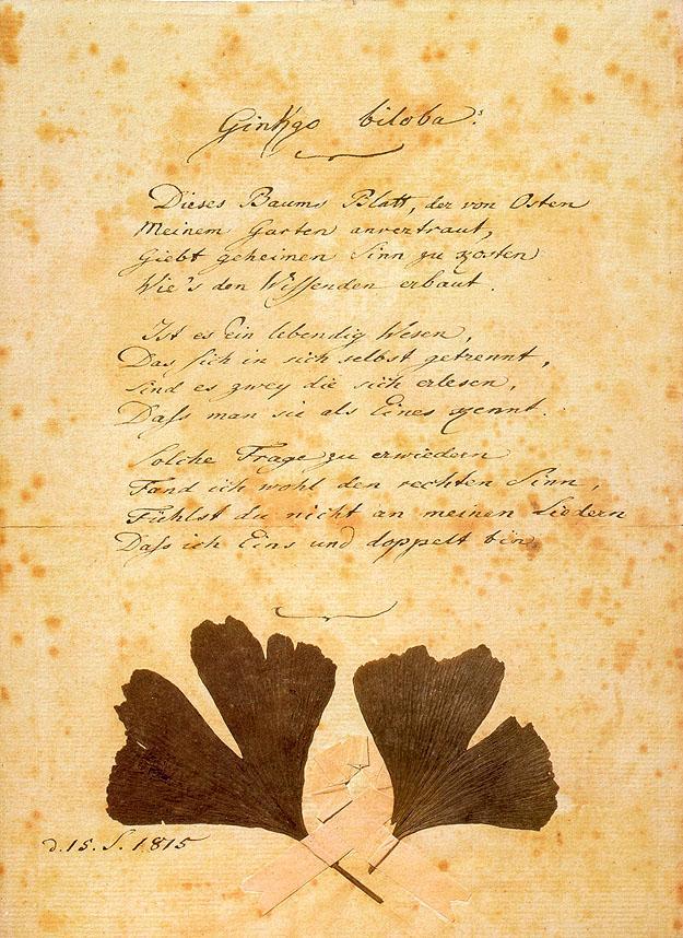 Ginkgo Biloba - Johann Wolfgang von Goethe
