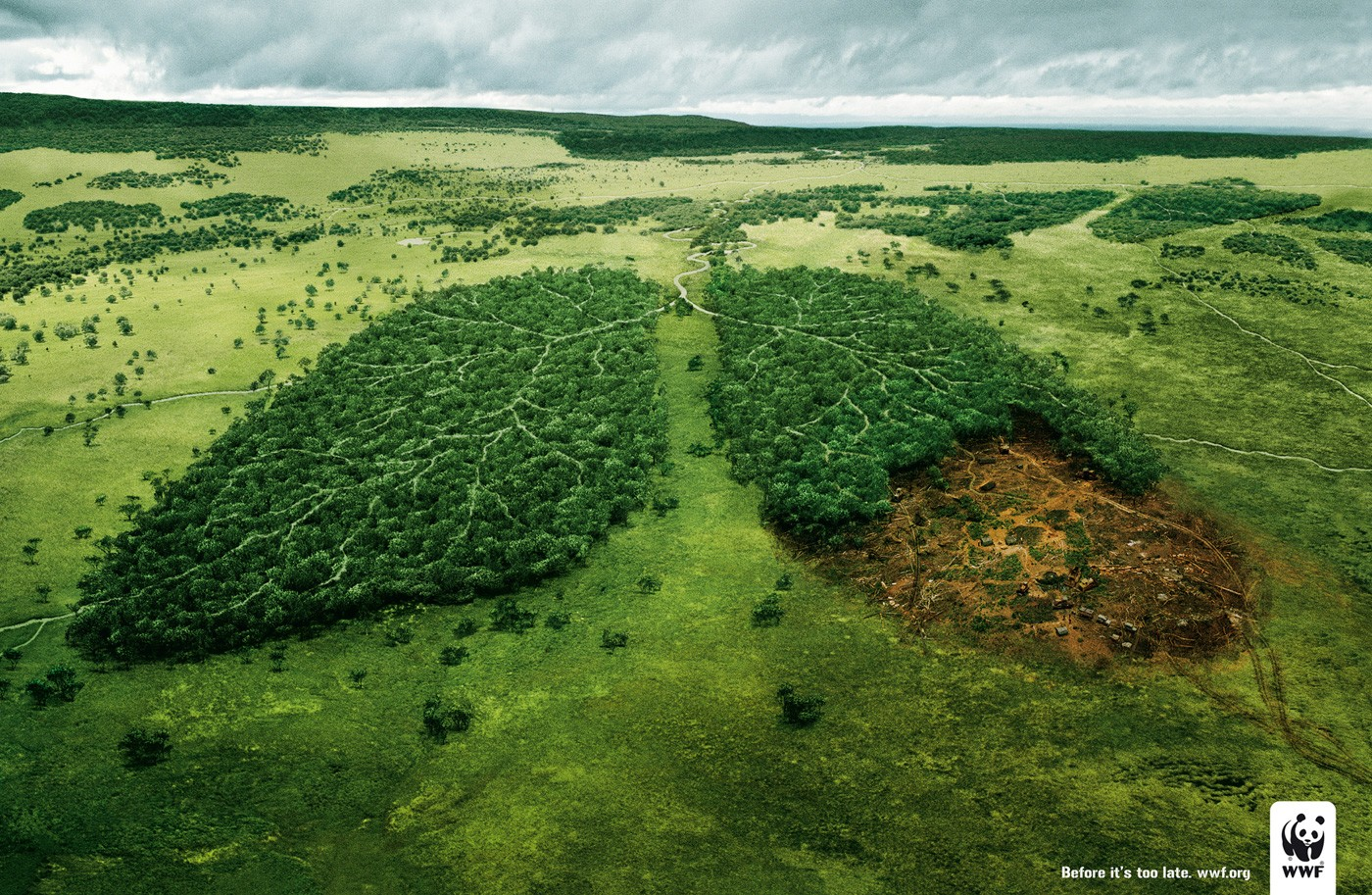 """Résultat de recherche d'images pour """"image de notre planete"""""""