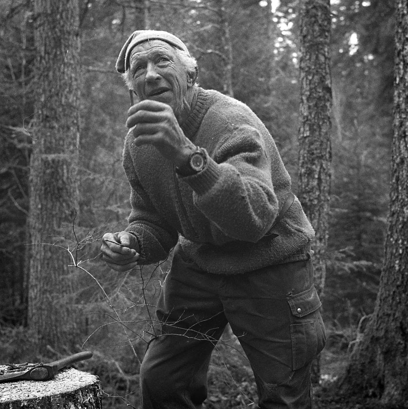Lorenzo Pellegrini - Cueilleur darbres - photographie de Anne-Lise Vullioud