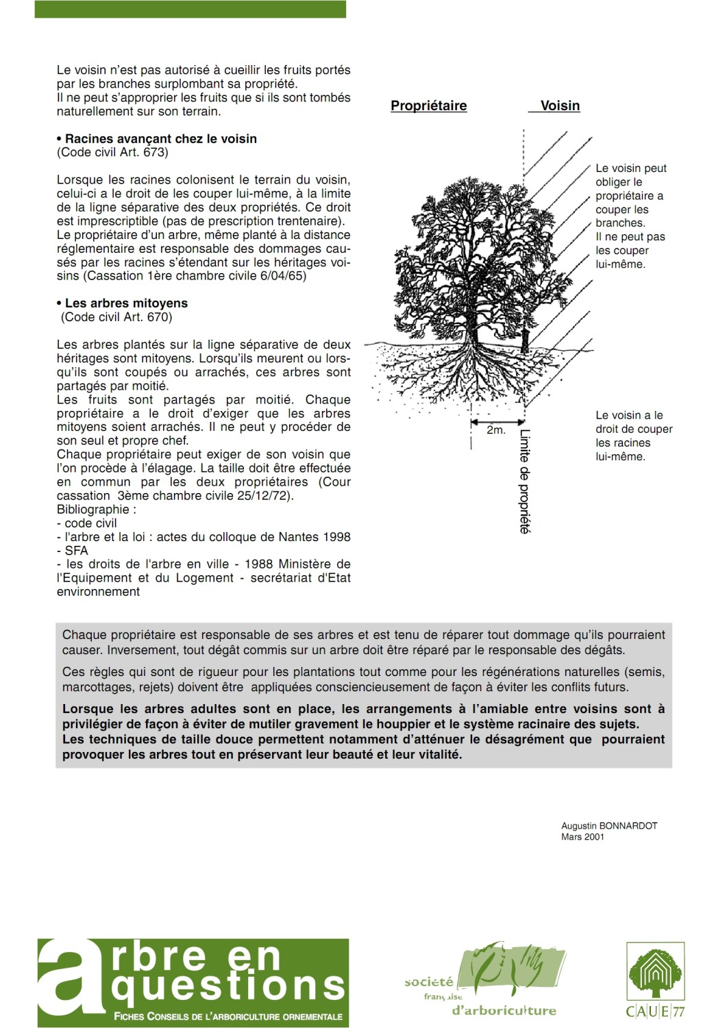 Droits de l arbre krapo arboricole - Cloture entre voisin code civil ...