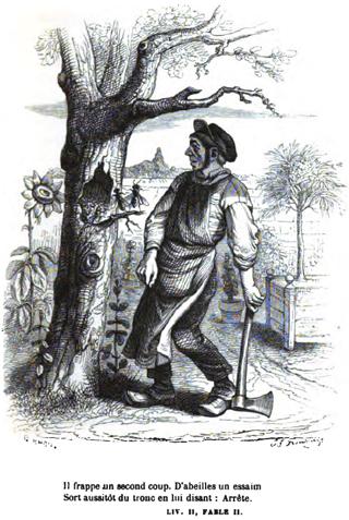 Le vieux arbre et le jardinier krapo arboricole for Le jardinier
