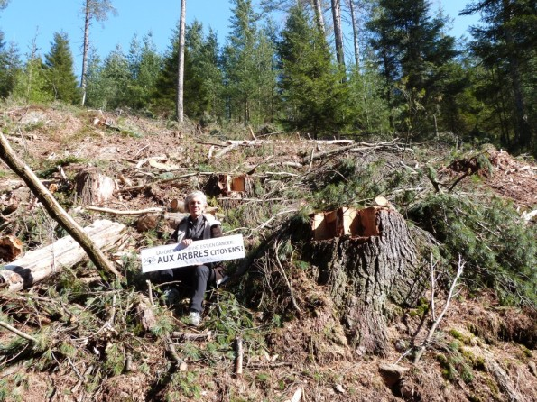 aux arbres citoyens - Mirabel-lne