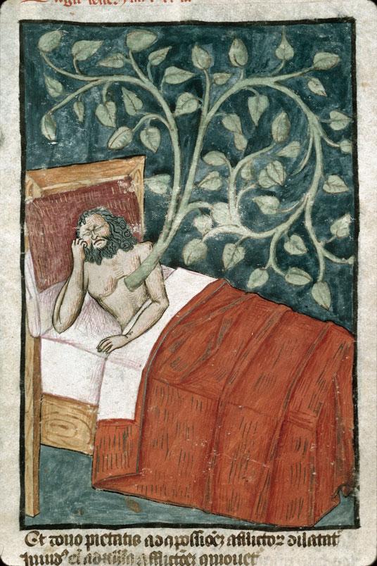 Songe nabuchodonosor - Marseille MS 0089