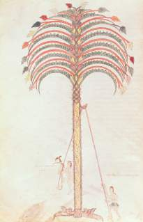 Fol147v The Metaphor of the Palm Tree from the Girona Beatus